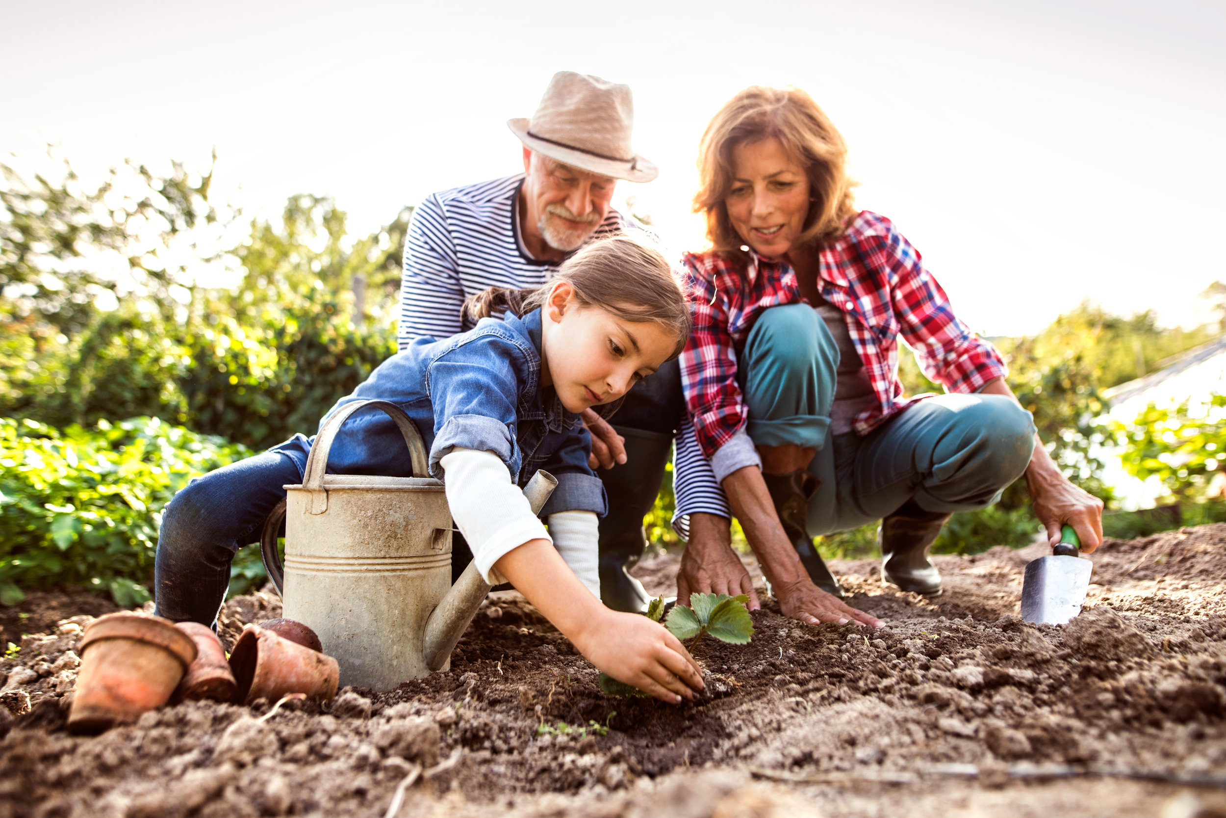 IT'S TIME TO PLANT ANNUALS AND WARM SEASON VEGGIES! -