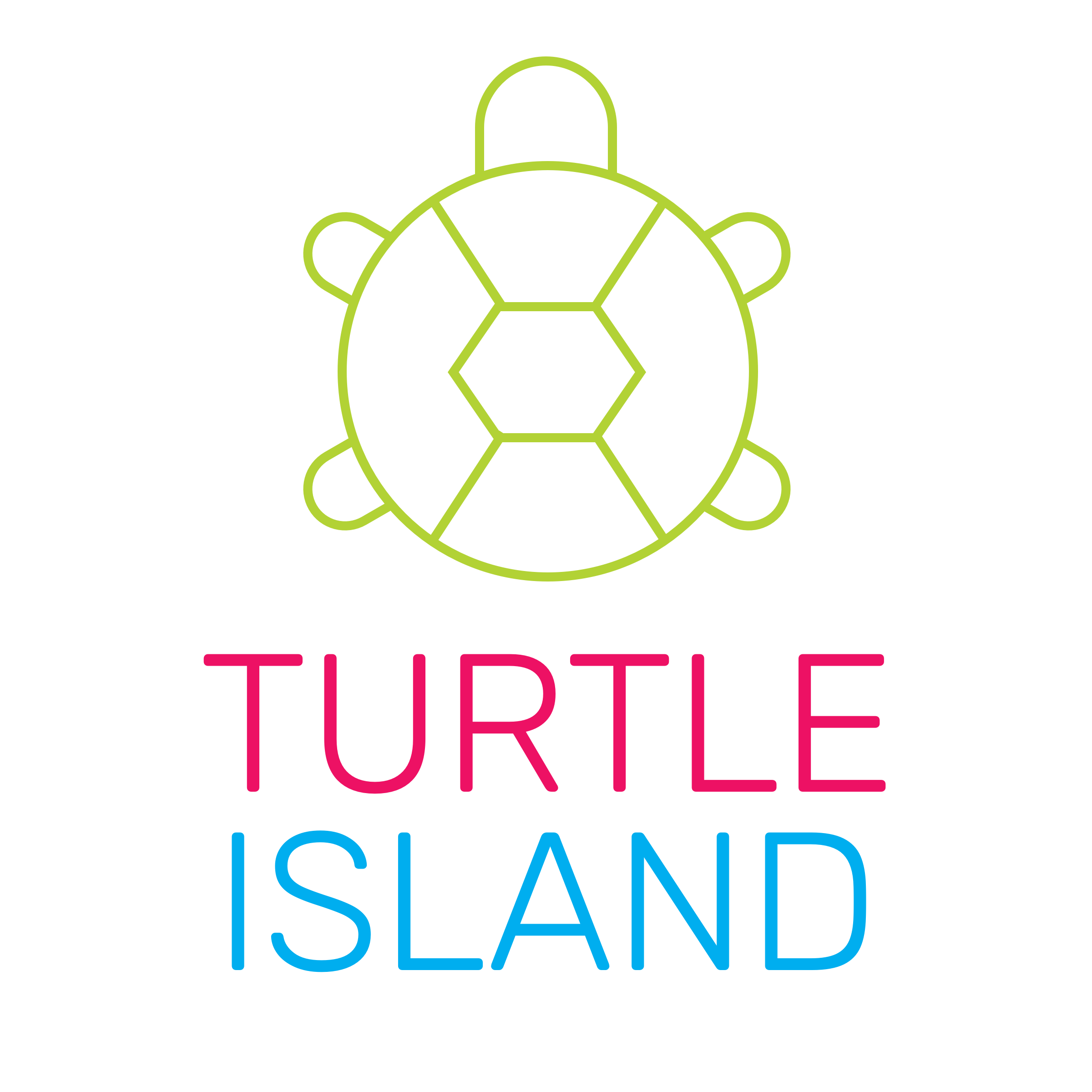 turtle-island .png