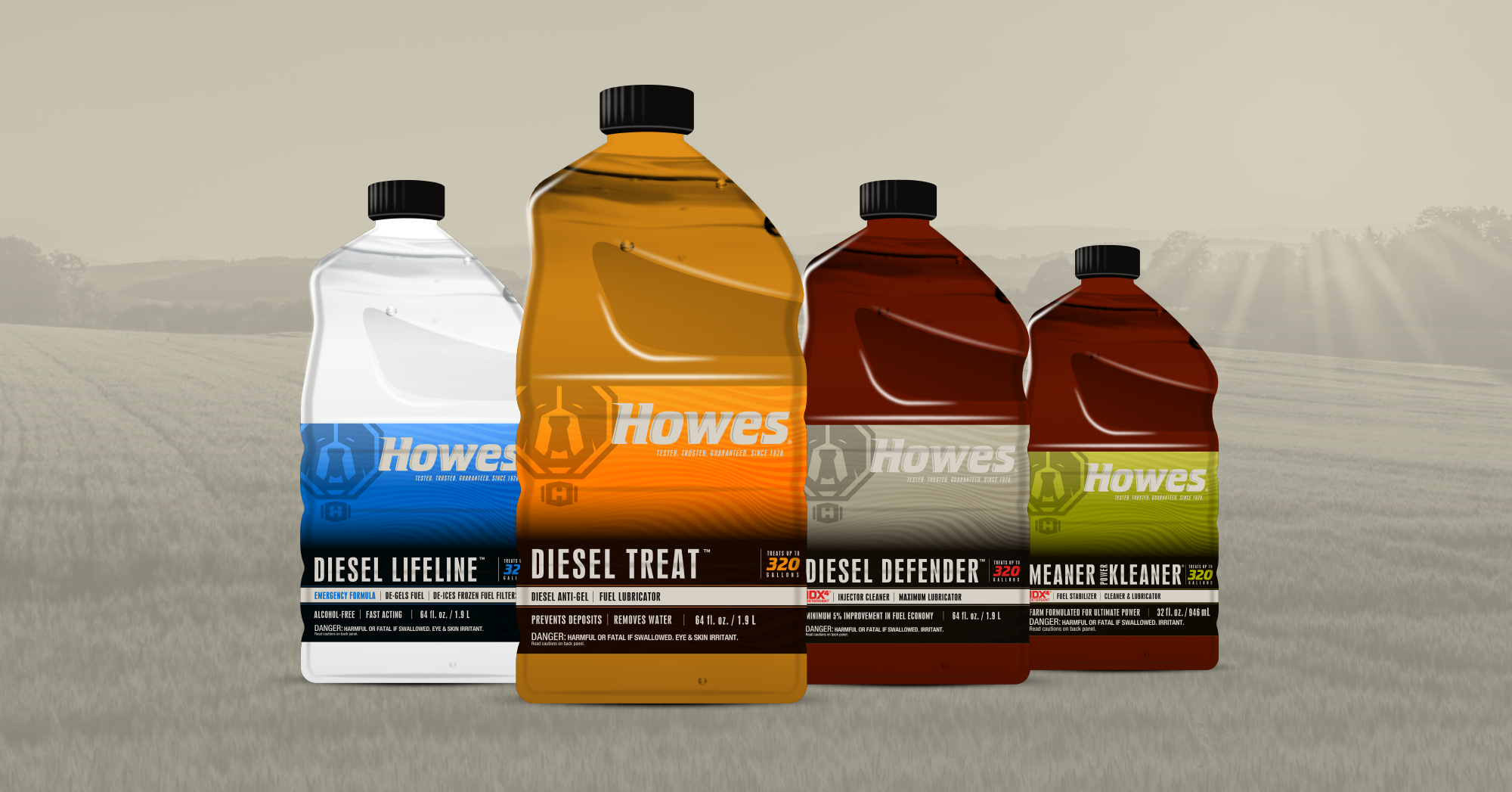 Howes_CaseStudy_images-07.png