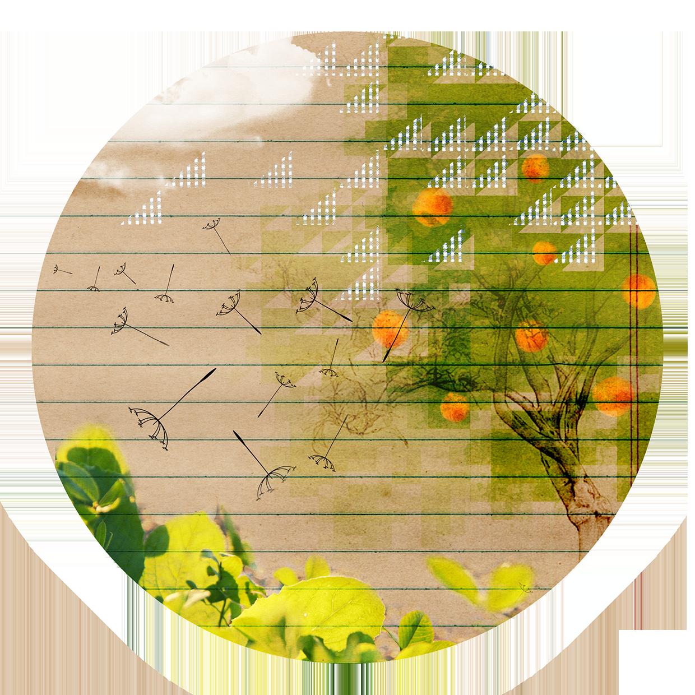 """""""Yo os he elegido"""". Y esta llamada es, precisamente, lo que garantiza nuestra eficacia apostólica, la fecundidad de nuestro servicio. Somos campesinos pacientes y confiados, pero debemos examinar dónde y cómo damos fruto. Dios se preocupa, como nadie, de este campo sembrado, de este pequeño huerto que son nuestras obras: trabaja, poda, cada día sentimos sus manos sobre nosotros. La mirada se concentra en la fecundidad; no dar vida es morir. El árbol de nuestras obras apostólicas se renueva, multiplica la vida. La semilla va donde sopla el viento, lejos del clamor y del ruido, se planta en los surcos de la historia y de los pueblos. Nuevas presencias educativas y pastorales nacen porque la misión salesiana contiene muchas más energías de cuanto no aparece, mucha más luz y gérmenes divinos. Todo un volcán de vida: la yema cambia en flor, la flor en fruto, el fruto en semilla."""