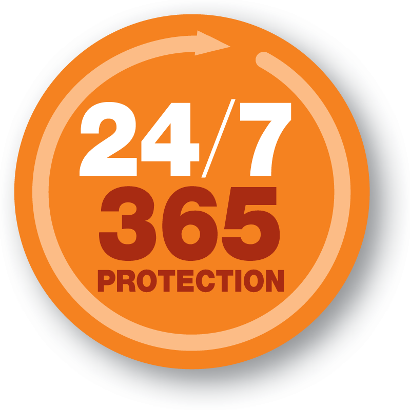 ES18 24 7 365 PROTECTION REV.png