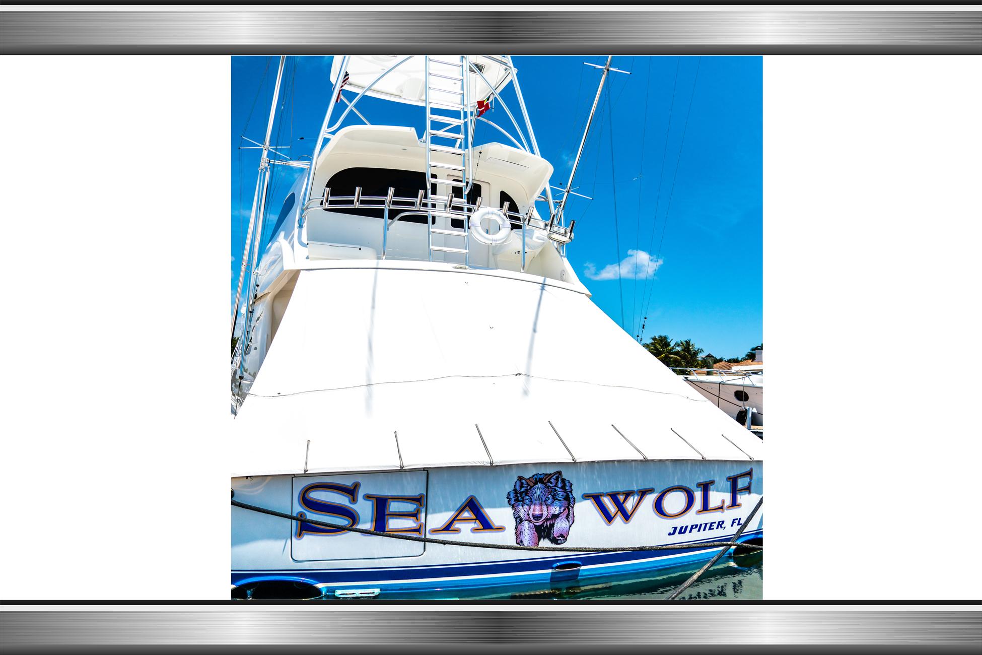 SEA WOLF_REV LAYERS LARGE_1B.jpg