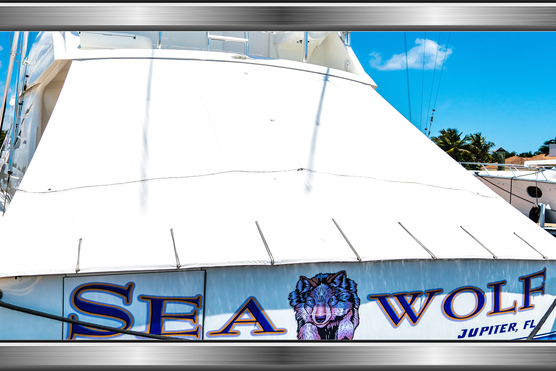 SEA WOLF_REV LAYERS LARGE_1.jpg