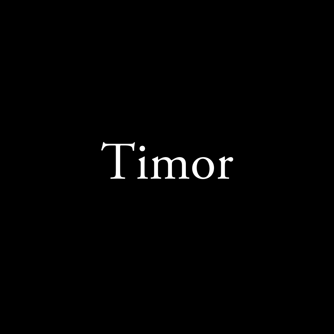 Timor.png