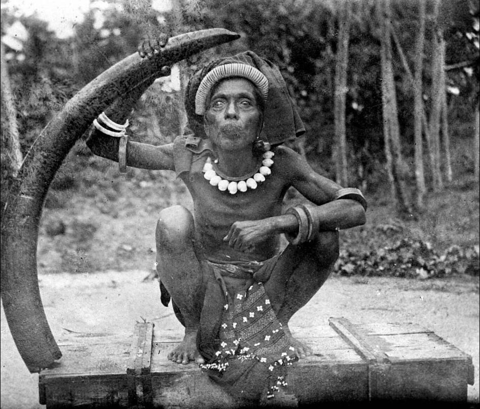Man with an Elephant Tusk   Tanimbar Islands © Nationaal Museum van Wereldculturen   The Netherlands