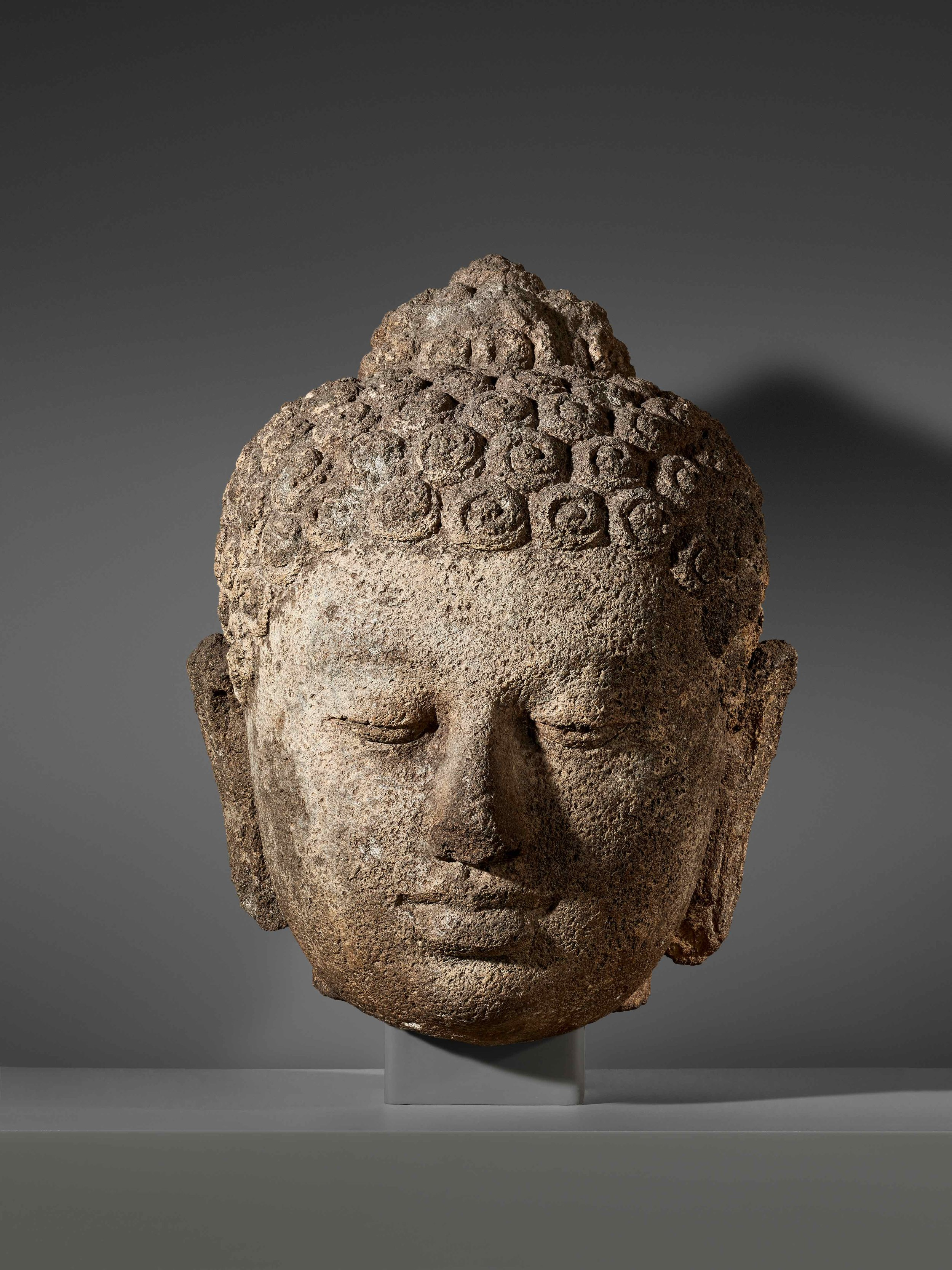 Stone Head of a Buddha | Central Java © Asian Art Museum of San Francisco