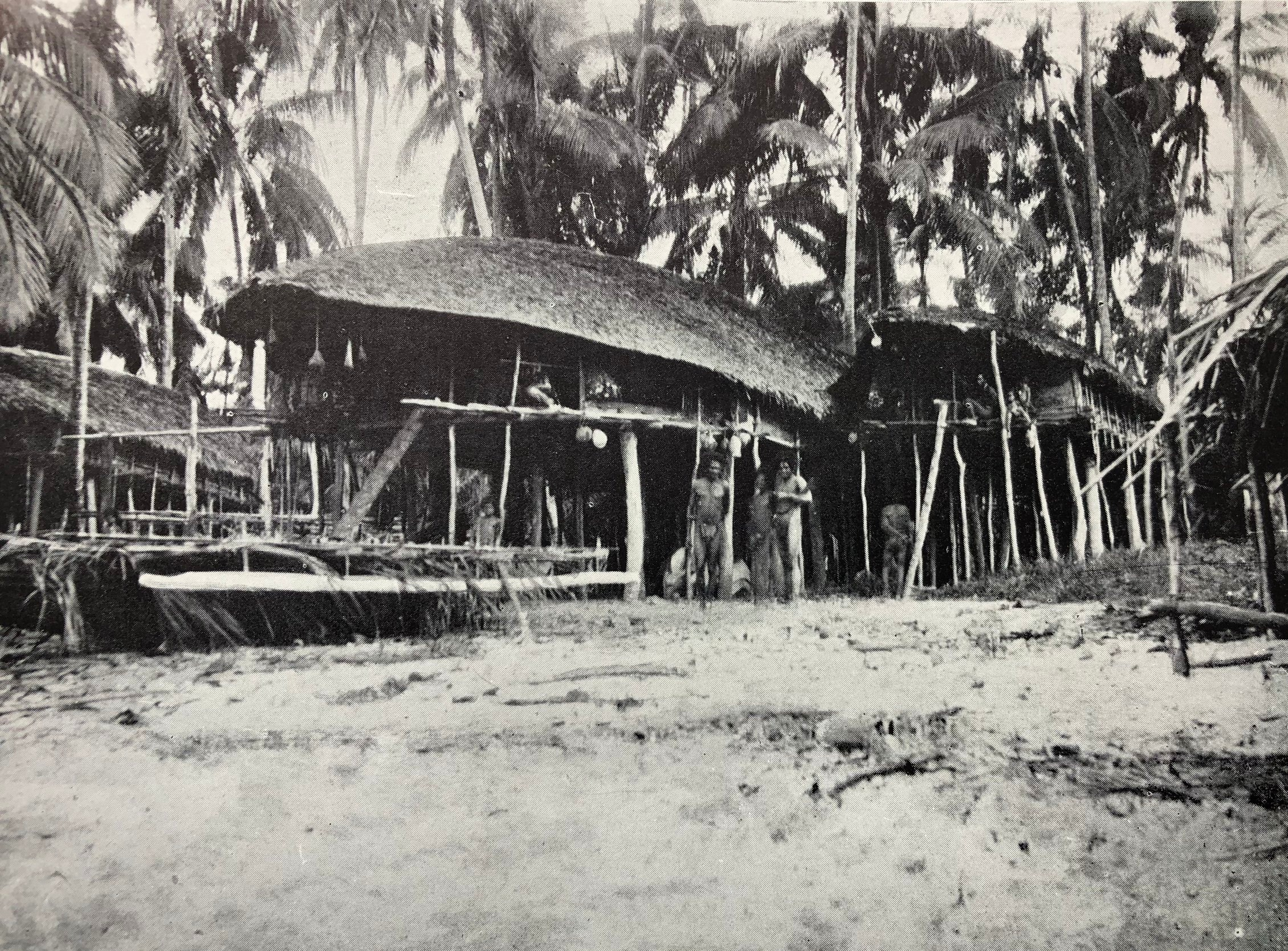 Characteristic Biak-style dwellings (1907) with turtle-shaped roofs located at Wari village, on the northwest coast of Biak Island.