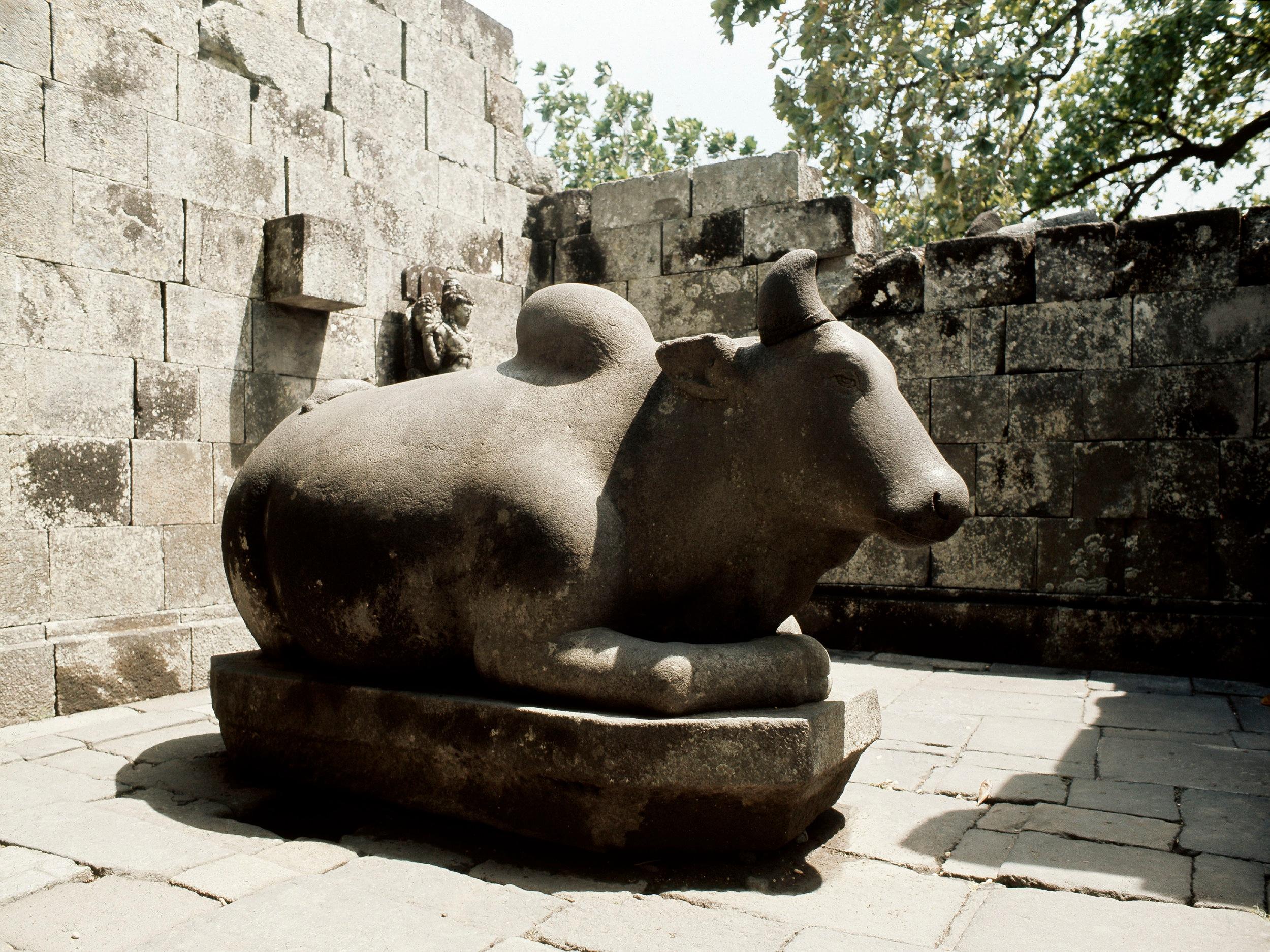 Nandi, the bull mount of Shiva, at the temple of the Lara Jonggrang complex. Country of Origin: Java, Indonesia. Culture: Hindu. Date/Period: c 900-930 AD. Place of Origin: Prambanan. Credit Line: Werner Forman Archive.