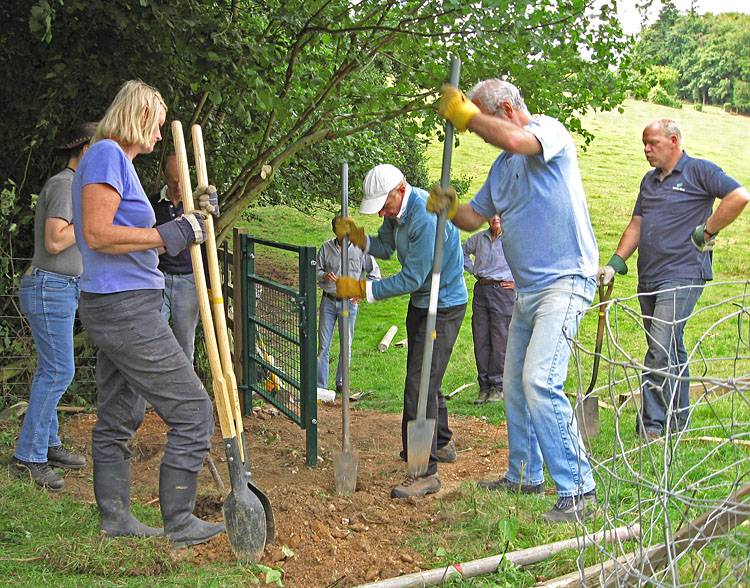 Group installing gate 2.jpg