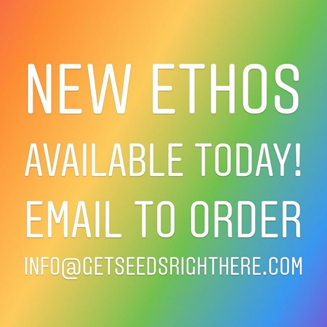 Shoot me an email to order the new Ethos Genetics.  info@getseedsrighthere.com