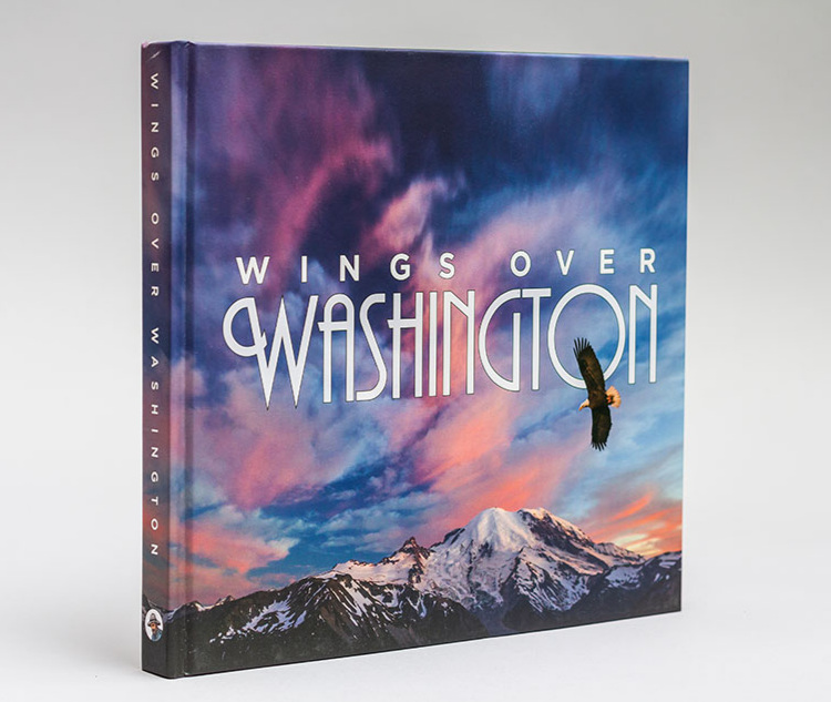 Wings Over Washington book cover