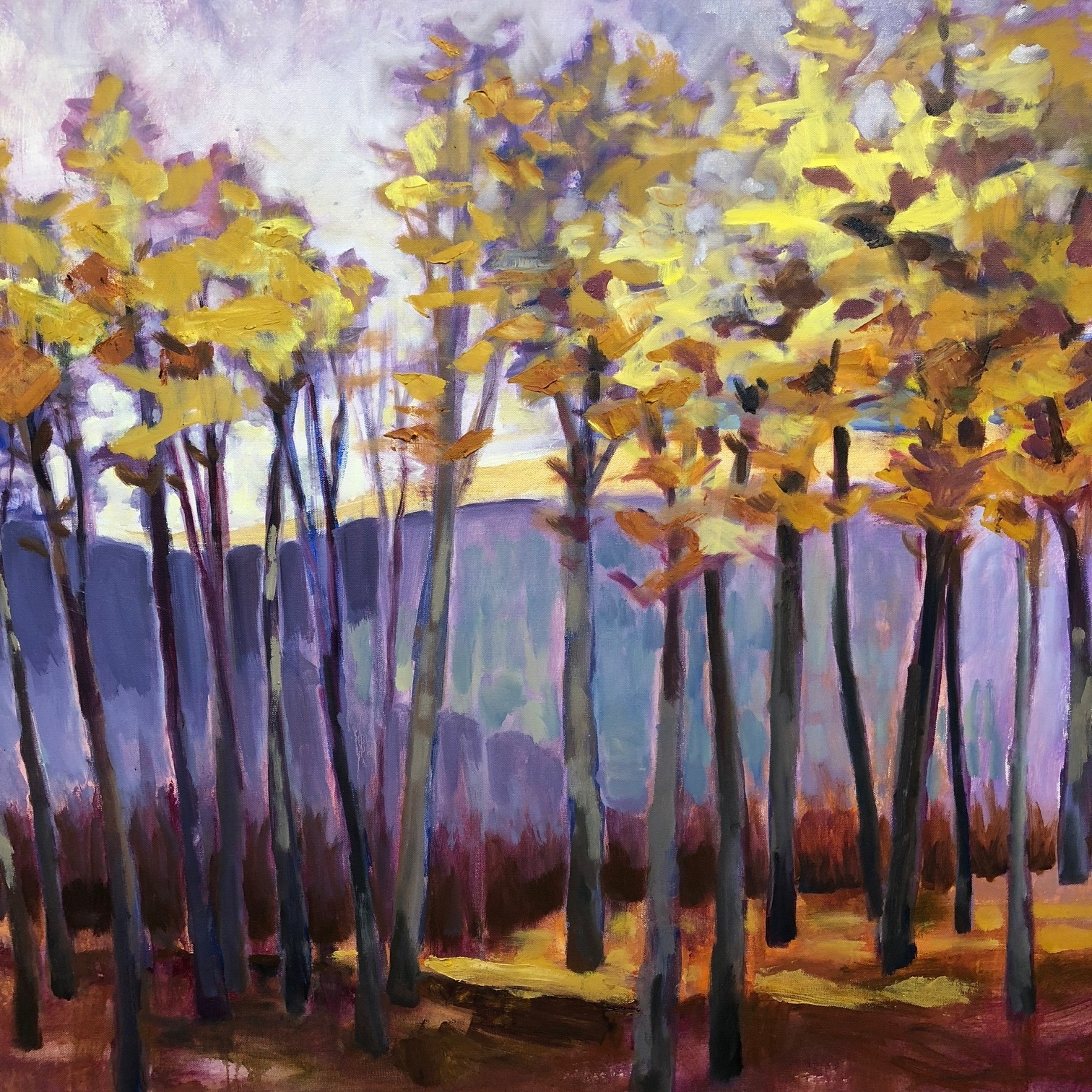 "Glorious, 36"" x 36"", Oil on Canvas"