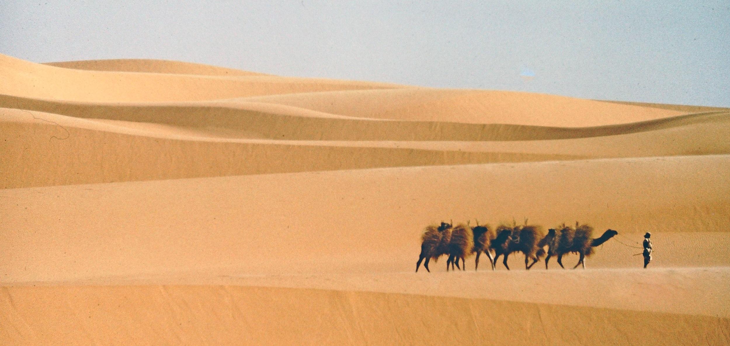 ALG+Nomad+Caravan+1.jpg