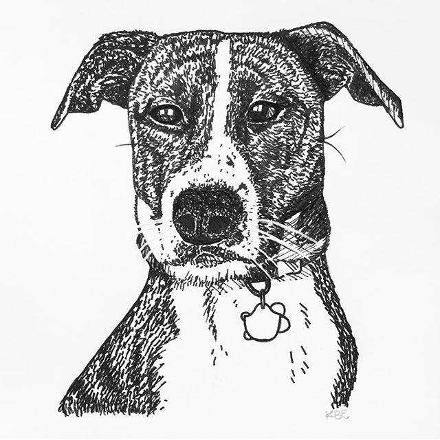 I drew this portrait of @pixelperfectpuppy yesterday. 😍😍😍