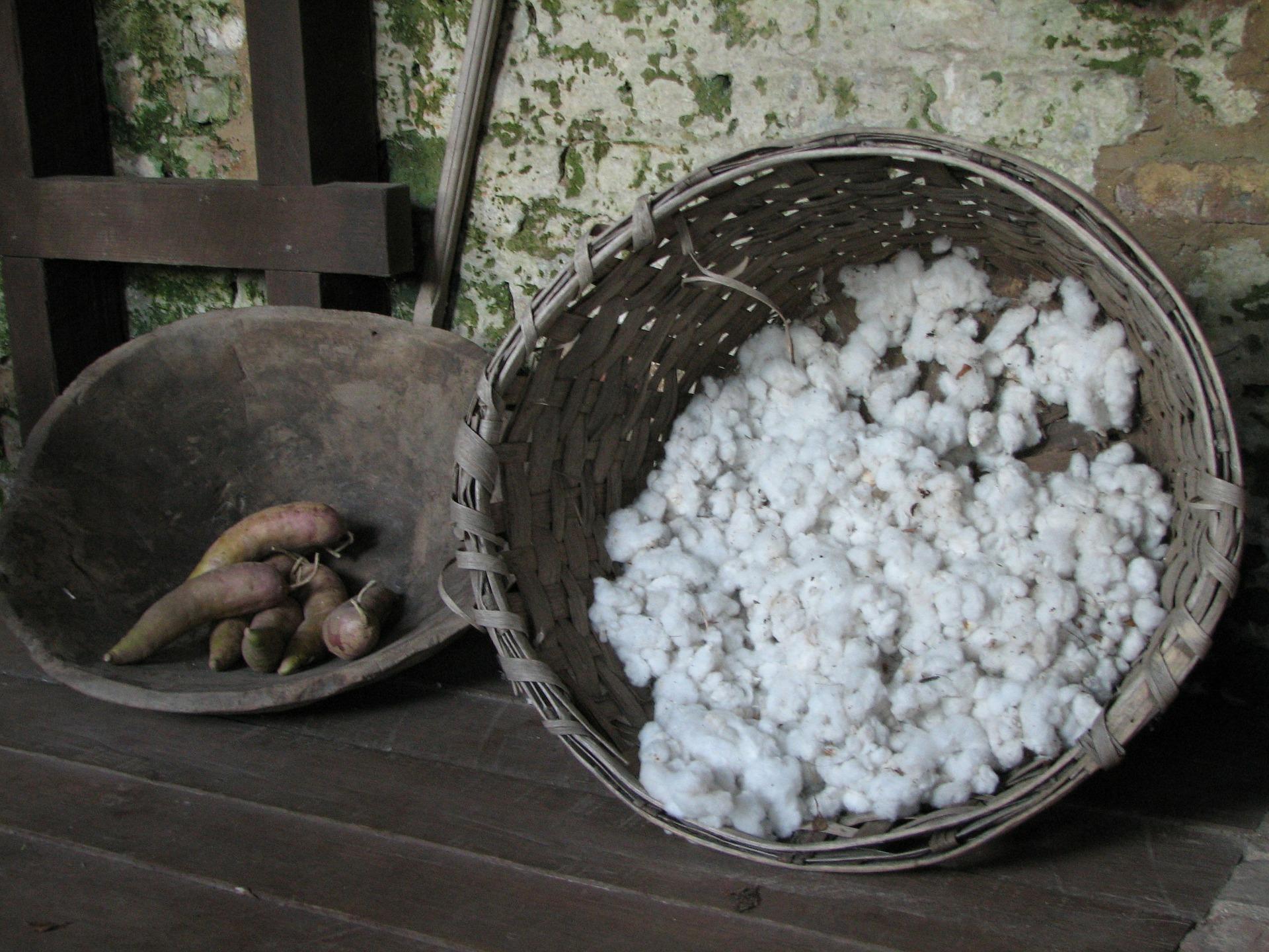 india_cotton_1