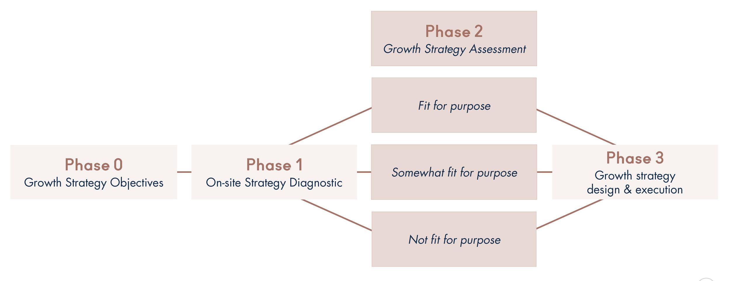 growth strategy_First Follower.jpg
