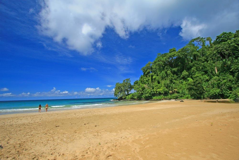 Caribbean Island Resort.jpg