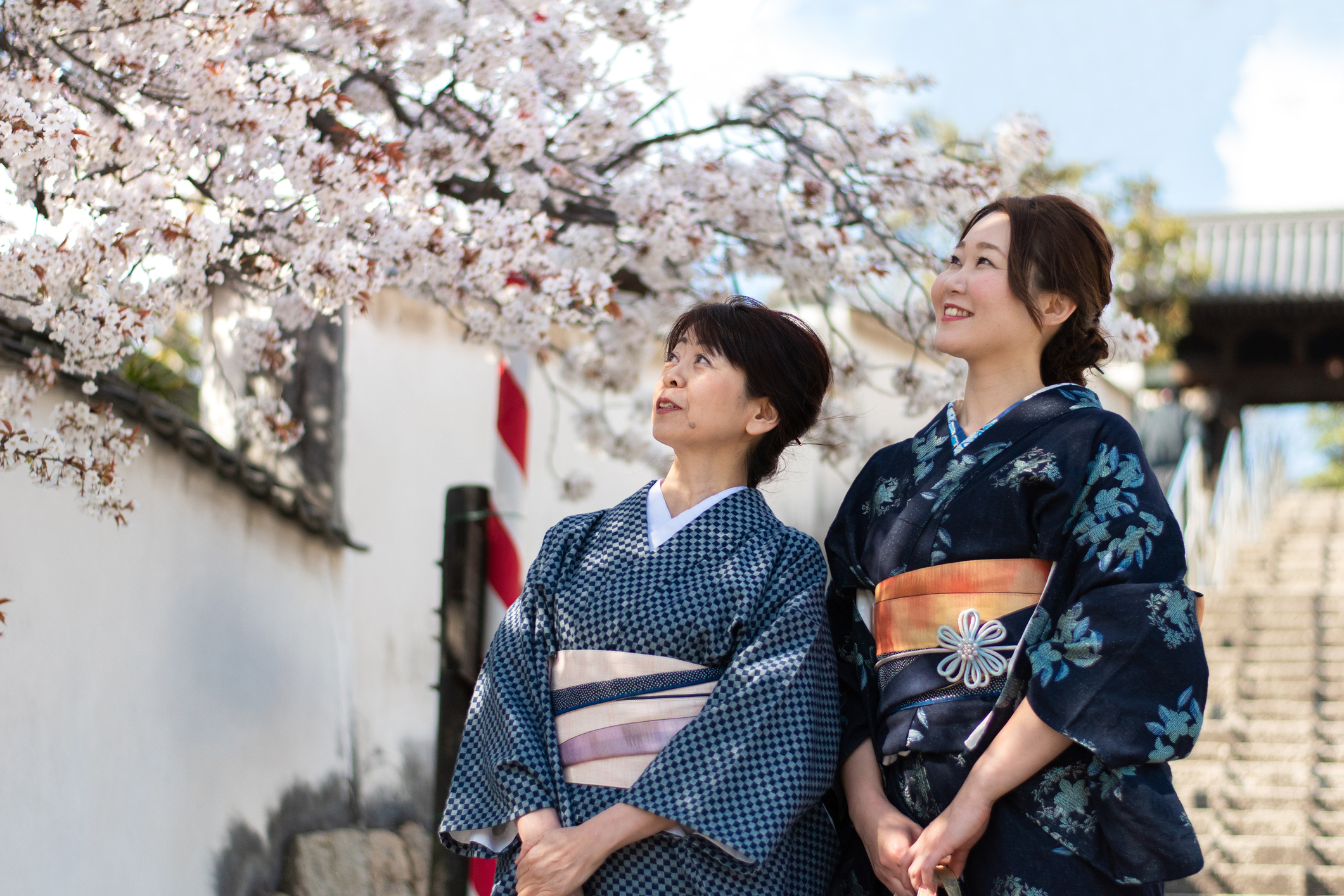 Japanese ladies wearing traditional kimonos with indigo ichimatsu pattern