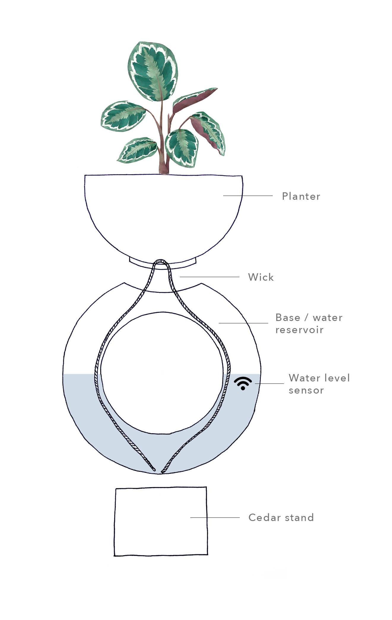 Toro planter cross section