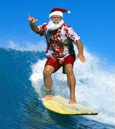 35805c139ffd075b1e37ded962add4a6--tropical-christmas-coastal-christmas.jpg
