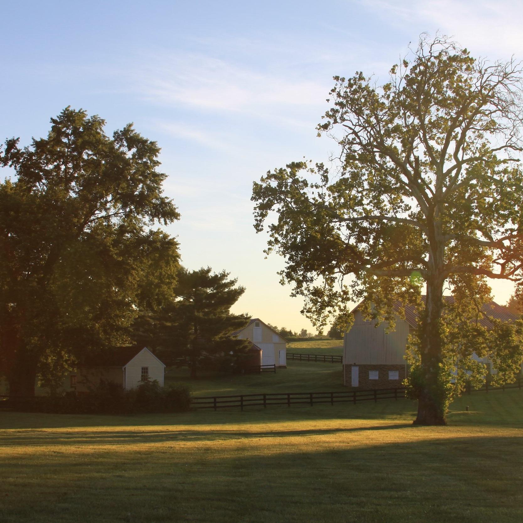 Front+Sunrise.jpg