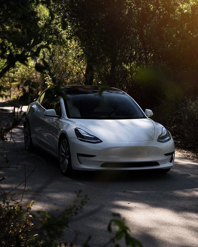 @teslamotors These cars are seriously the best 😍🐇