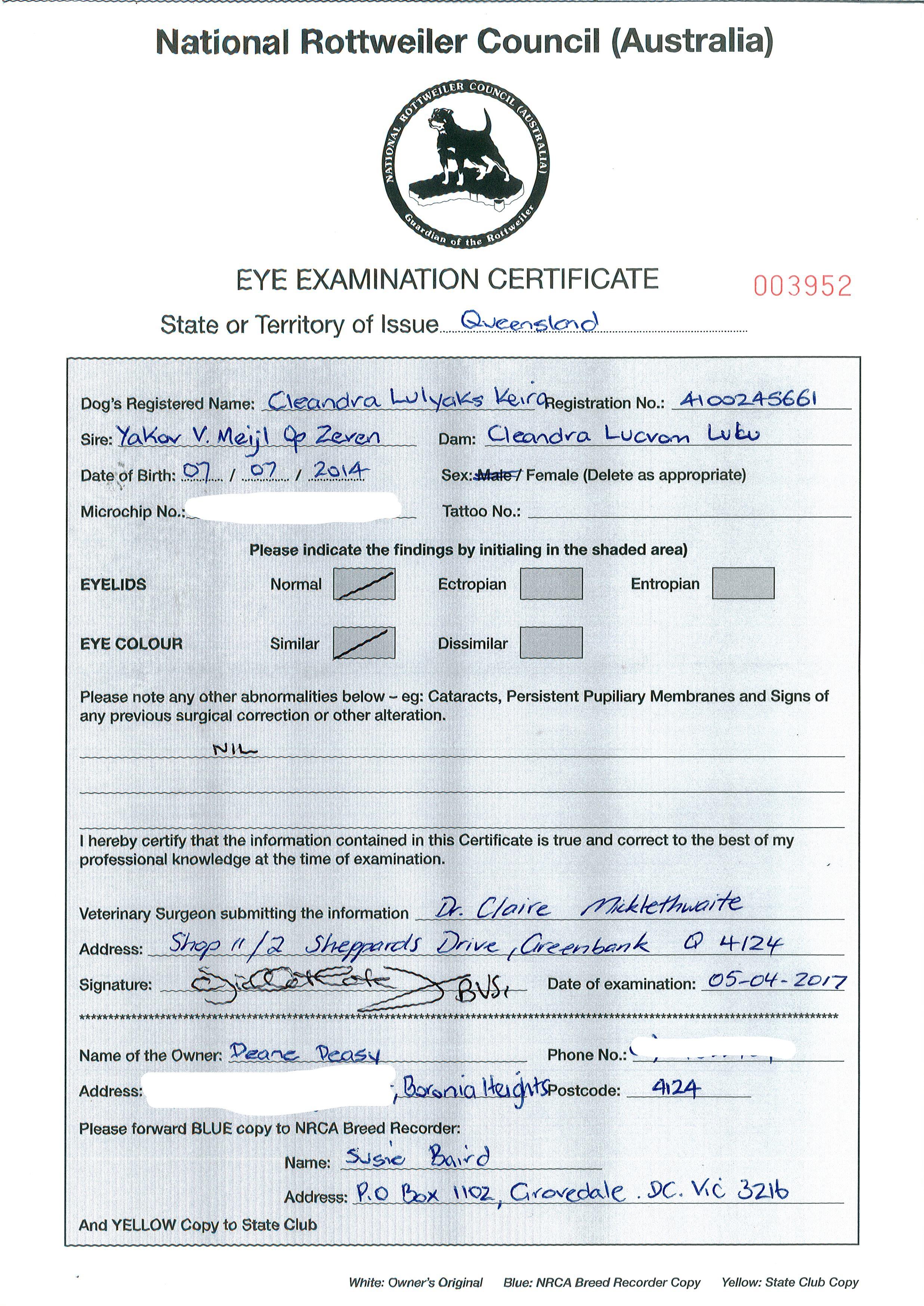 Keira Eye Cert - Copy_LI.jpg