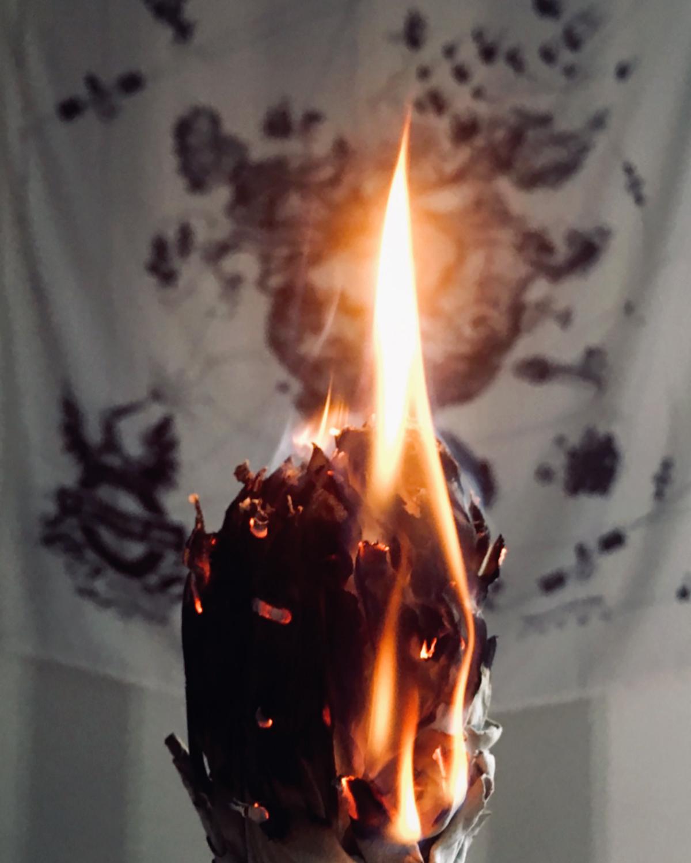 Bâton de Sauge Blanche - > E-BOUTIQUE