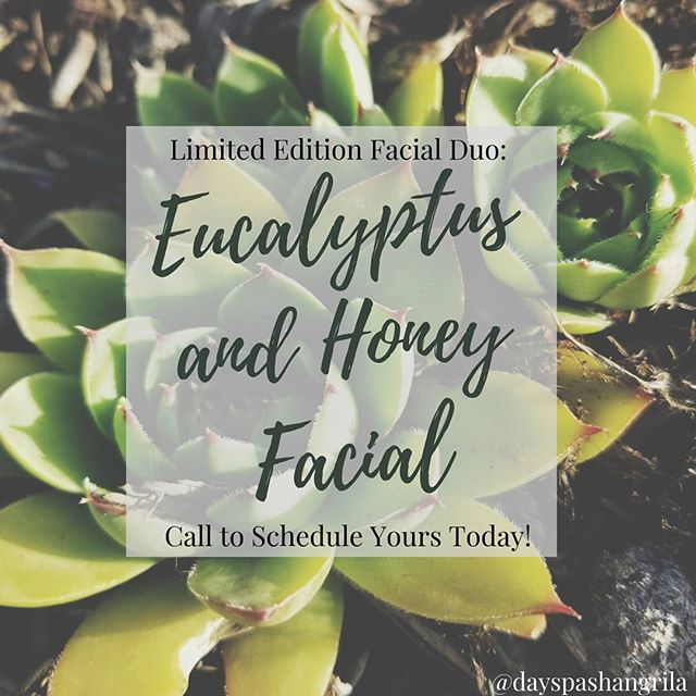 💫🍃New Facial Duo🍃💫 The Eucalyptus enzyme is full of ingredients that help increase cell renewal, barrier function, and reduce redness in the skin! Then the Golden Honey mask is the perfect treat for the skin leaving it with a hydrated smooth finish! 🧖♀️💆♀️This duo is great for those with Sensitive, Aging, or Dry Skin! #facials #skincare #skinscriptrx #skinscript #microdermabrasion #antiagingfacial #antiagingskincare #dermaplaning #acnetreatment #esthetician #estylife #esthetics #eucalyptus #honey #Doterra #essentialoils #ShangrilaDaySpa  #eucalyptusandhoneyfacial