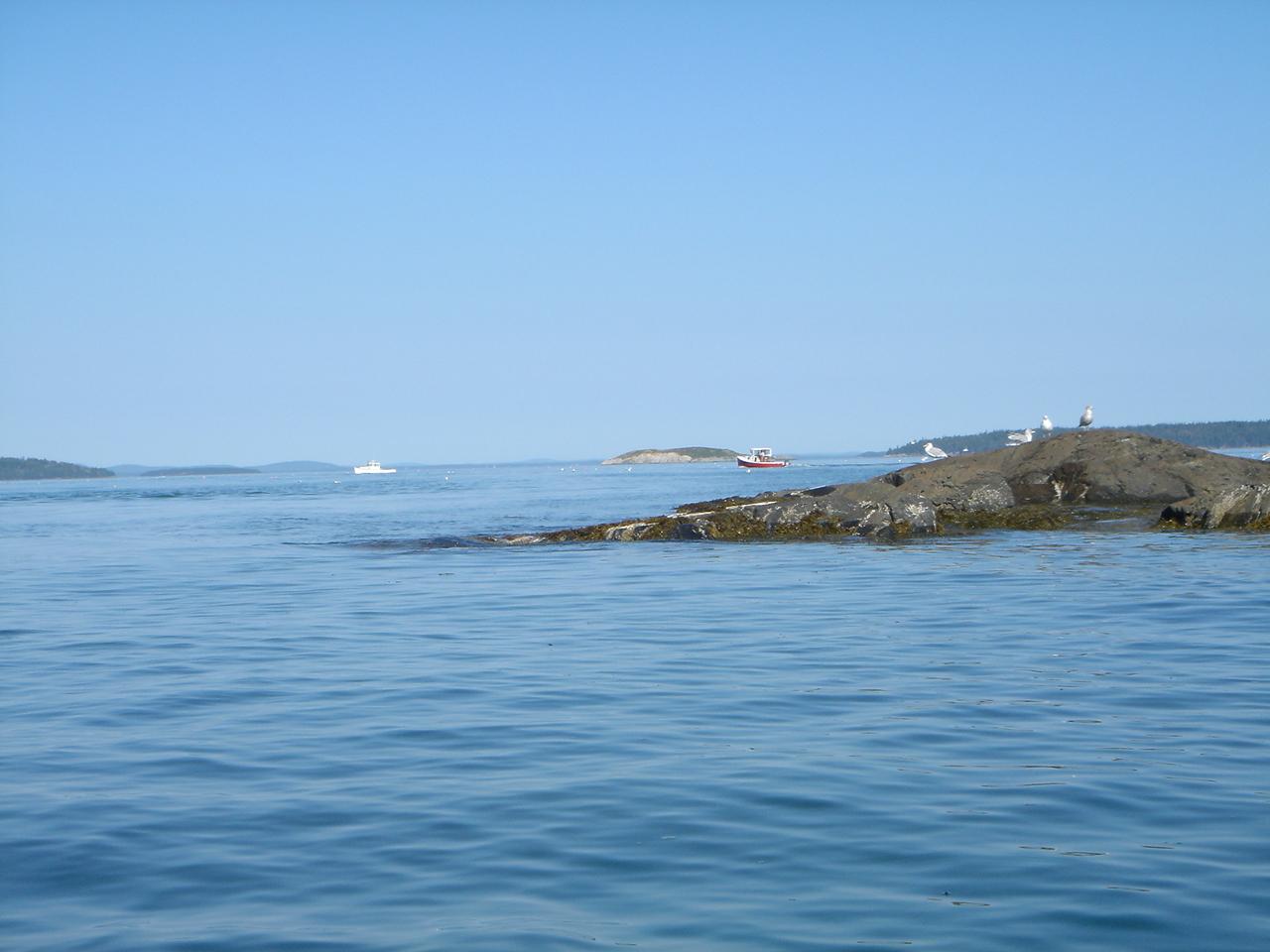 south shore 6.jpg