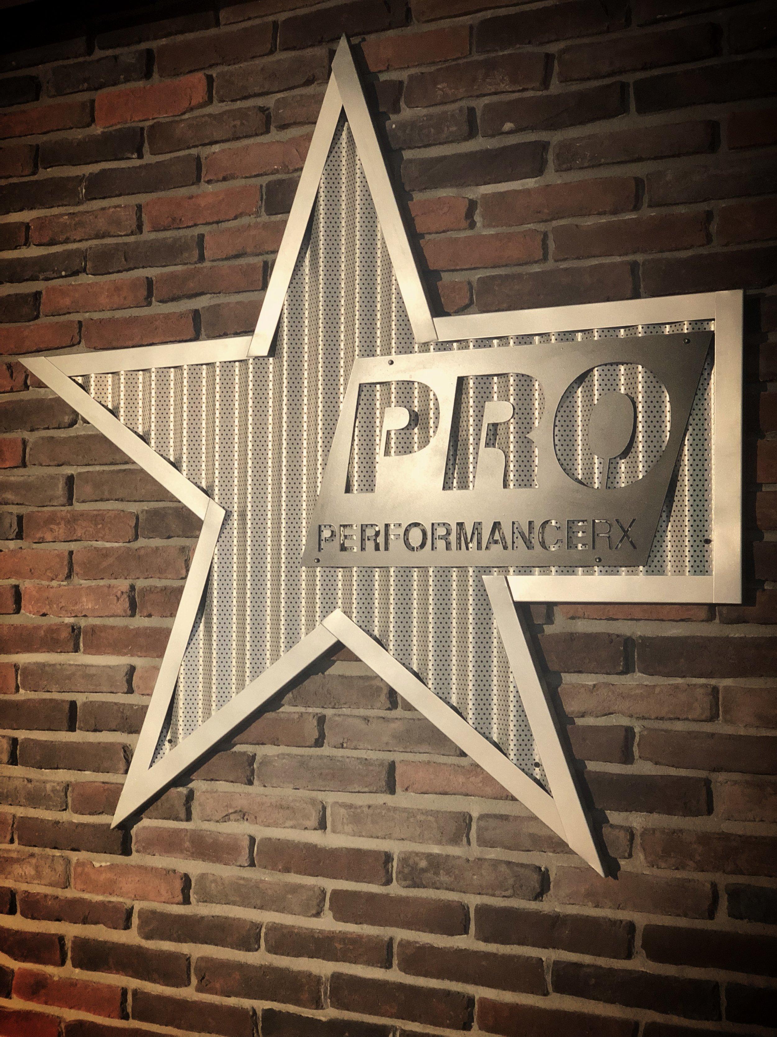 Pro Logo Brick Wall.JPG
