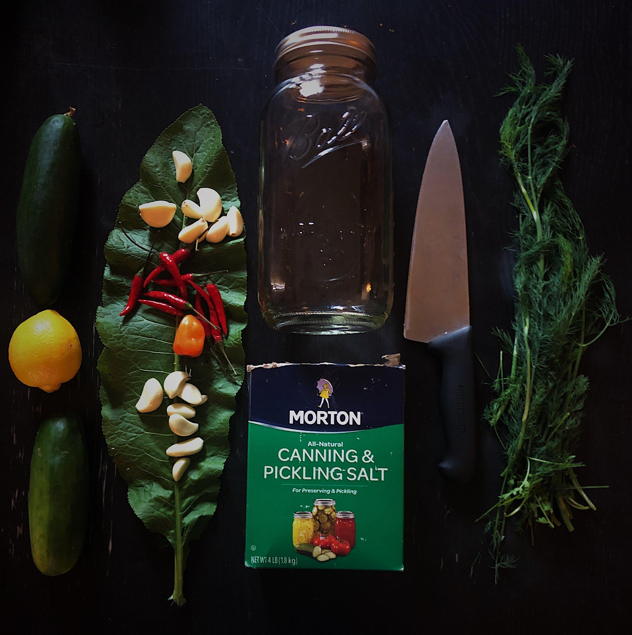 dill pickle workshop.jpg