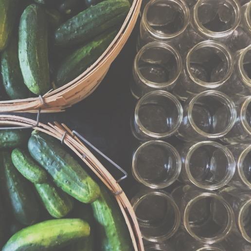 pickle sale pic.JPG