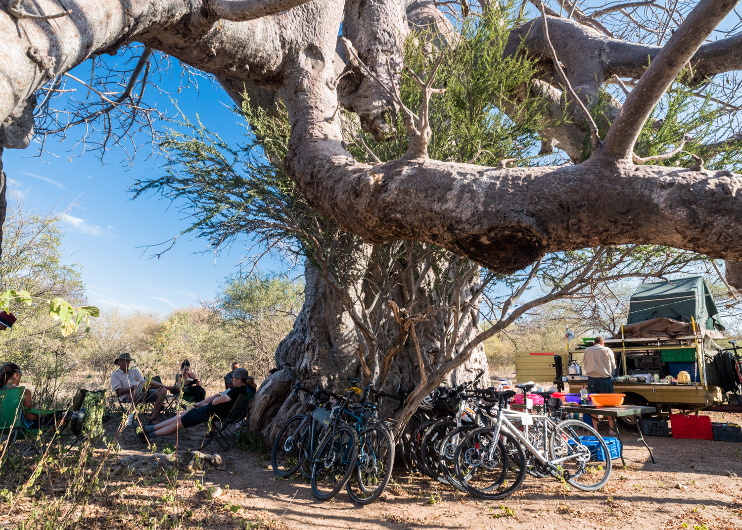Wild camp somewhere near the Namibian border under an ancient Baobab Tree was one of the most spectacular nights of Leg 4. We set up the kitchen on one side and the lounge on the other reveling in the shade, it was the only tree we had seen for hours. Baobab are both protected and worshipped in many parts of Southern Africa, and we were visited by a church group who sang and danced under the tree that night.