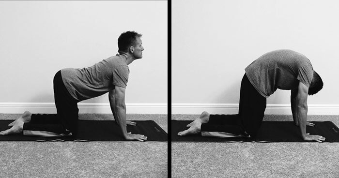 The Cat/Cow pose nourishes the nervous system and instantly relaxes the body.