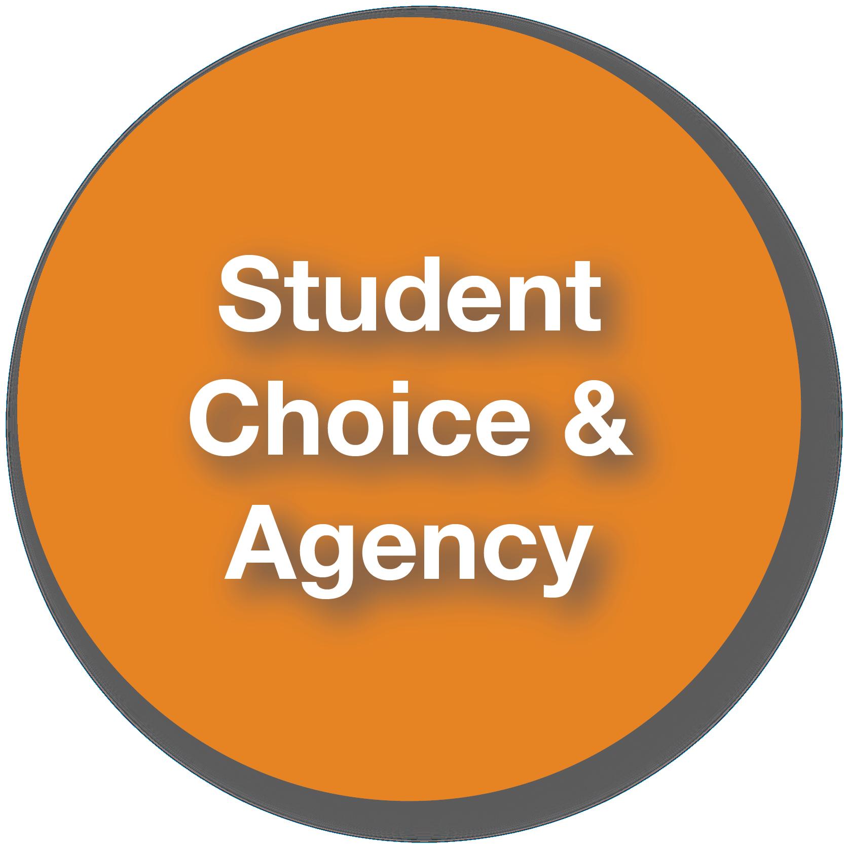 PLcomp-StudentChoice.png