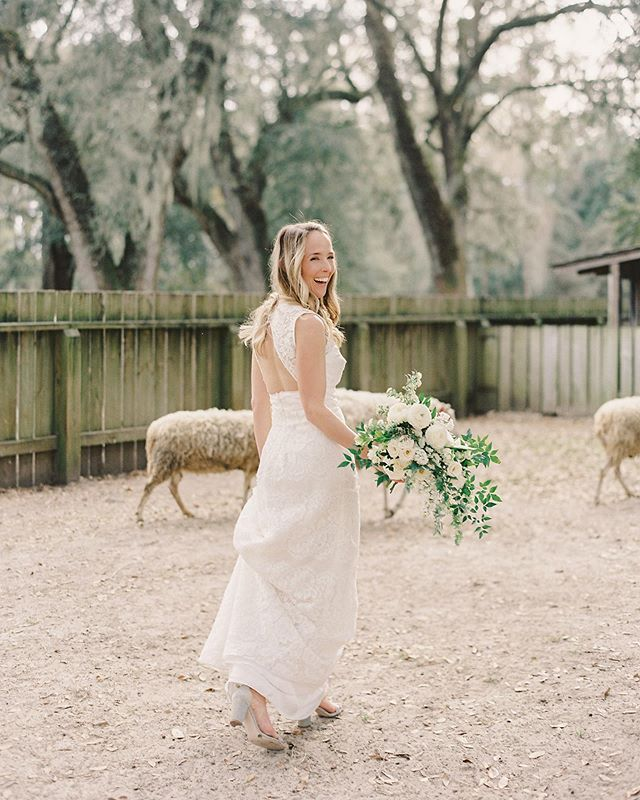 Just a bride, and her 🐑 tribe ✨💫 ⠀⠀⠀⠀⠀⠀⠀⠀⠀⠀⠀⠀⠀⠀⠀ 📷: @annerhettphotography