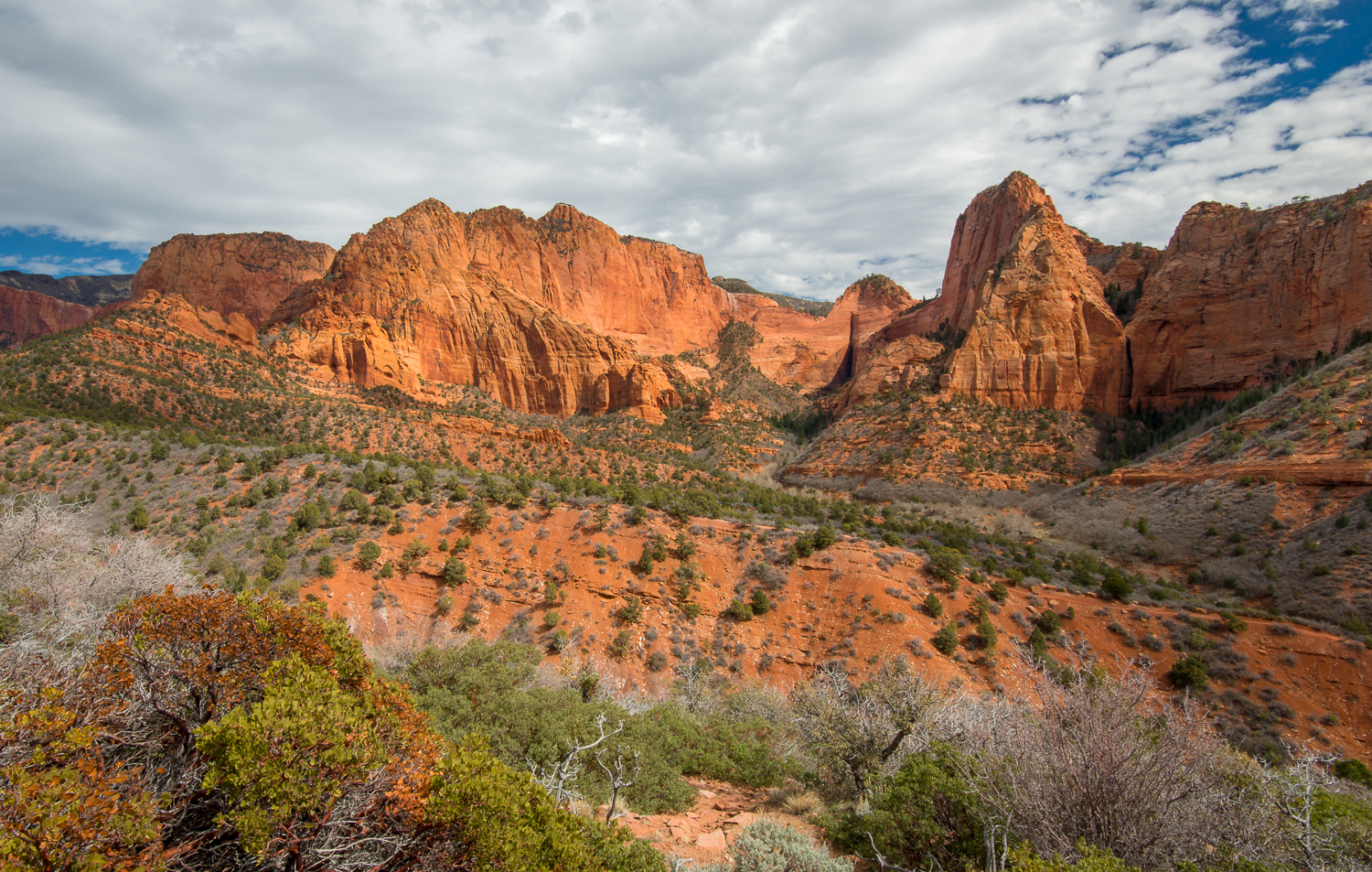 Overlook, Kolob Canyons