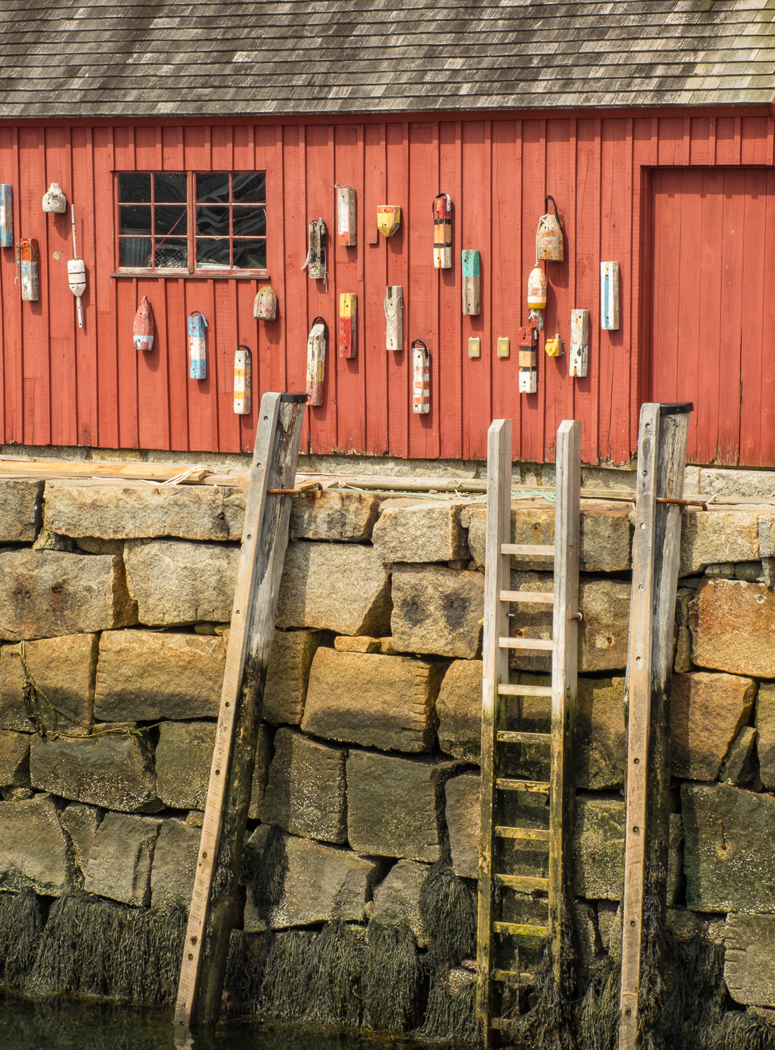 Bouys and Ladder
