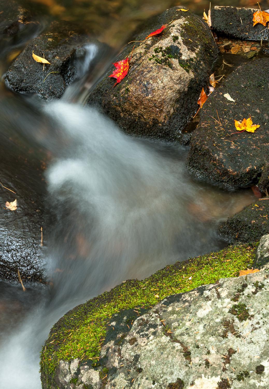 Streambed, Jordan Pond