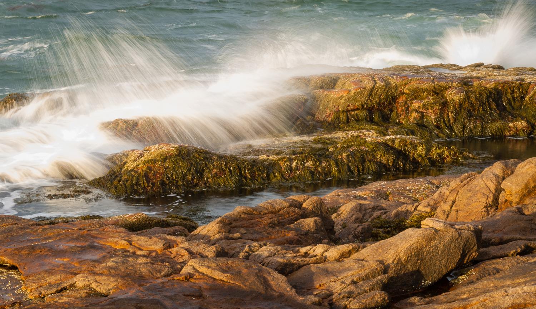 Otter Cliffs Spray