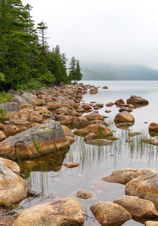 Fog, Jordan Pond