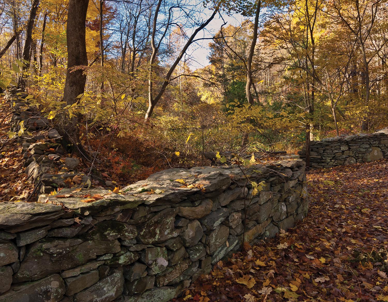 Trail Side Walls