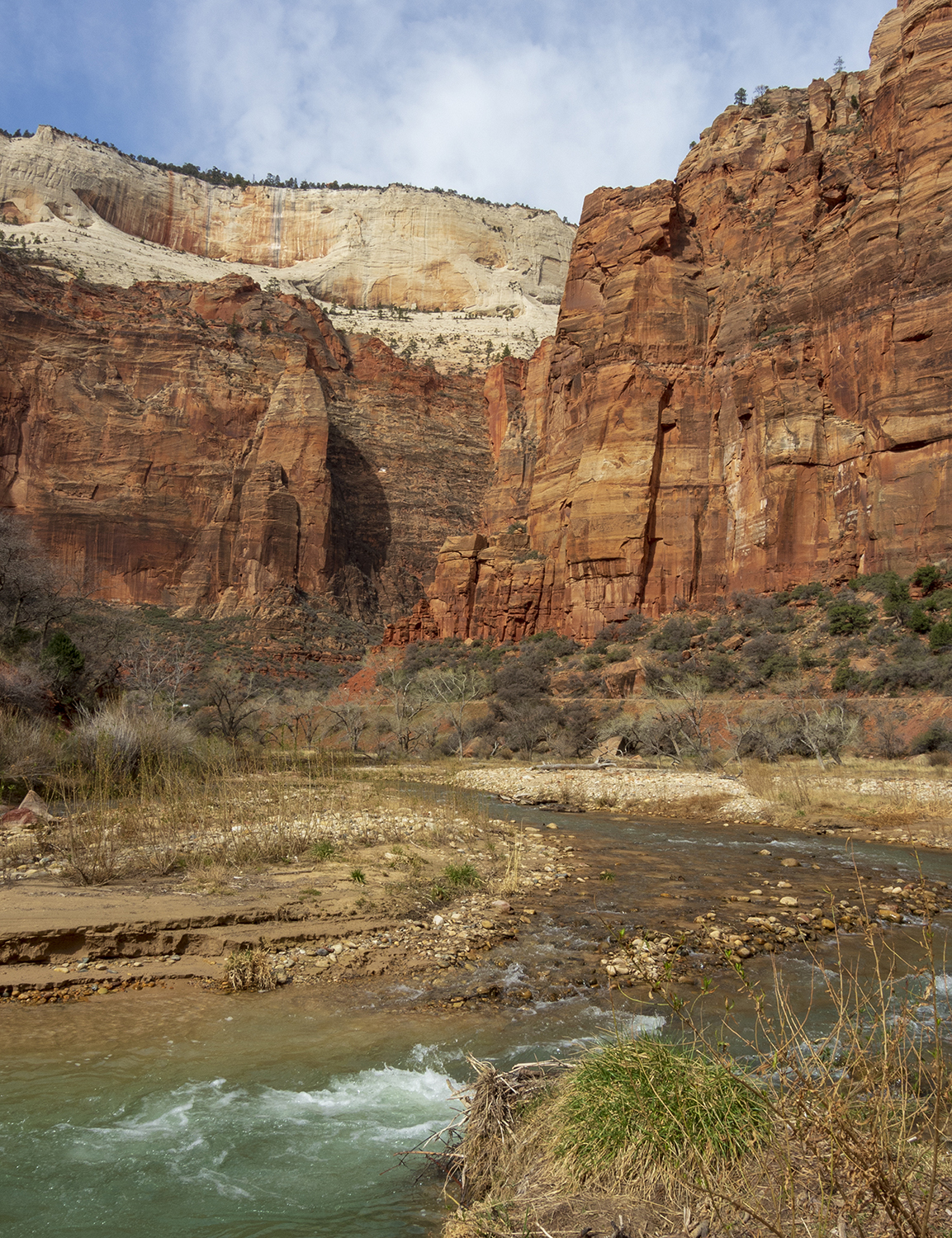Zion River Turns