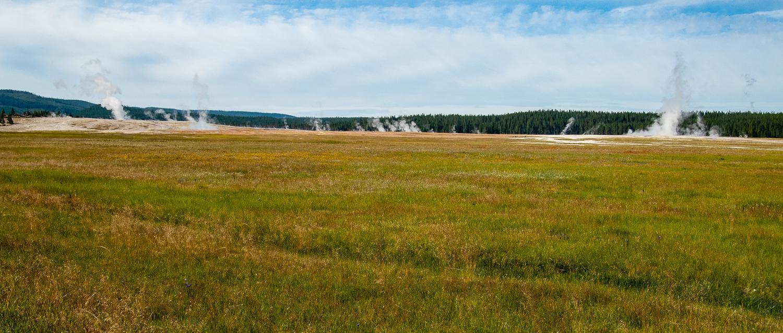 Field of Geysers