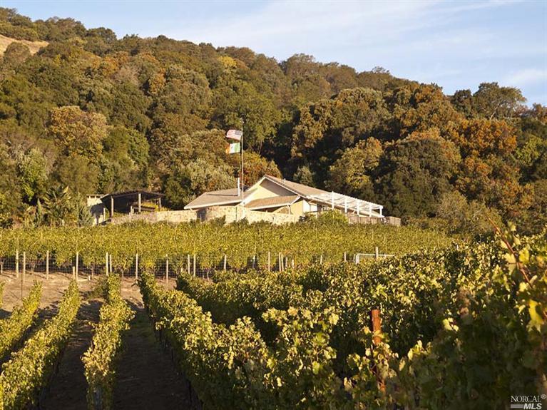 Bialla-Vineyard1.jpg