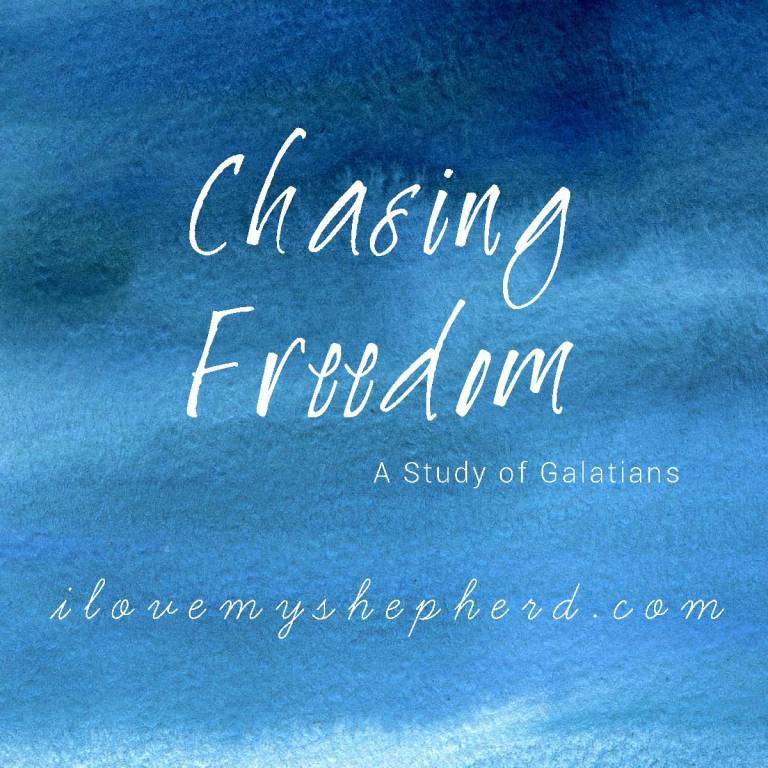 chasingfreedom_Square.jpg