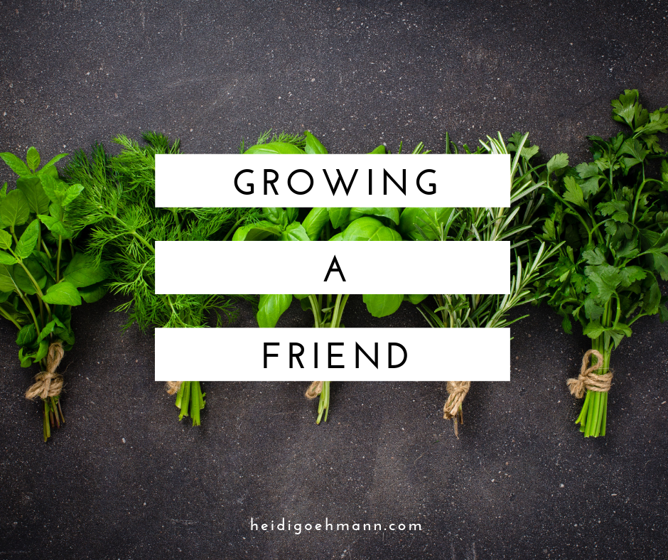 Growing a Friend.png