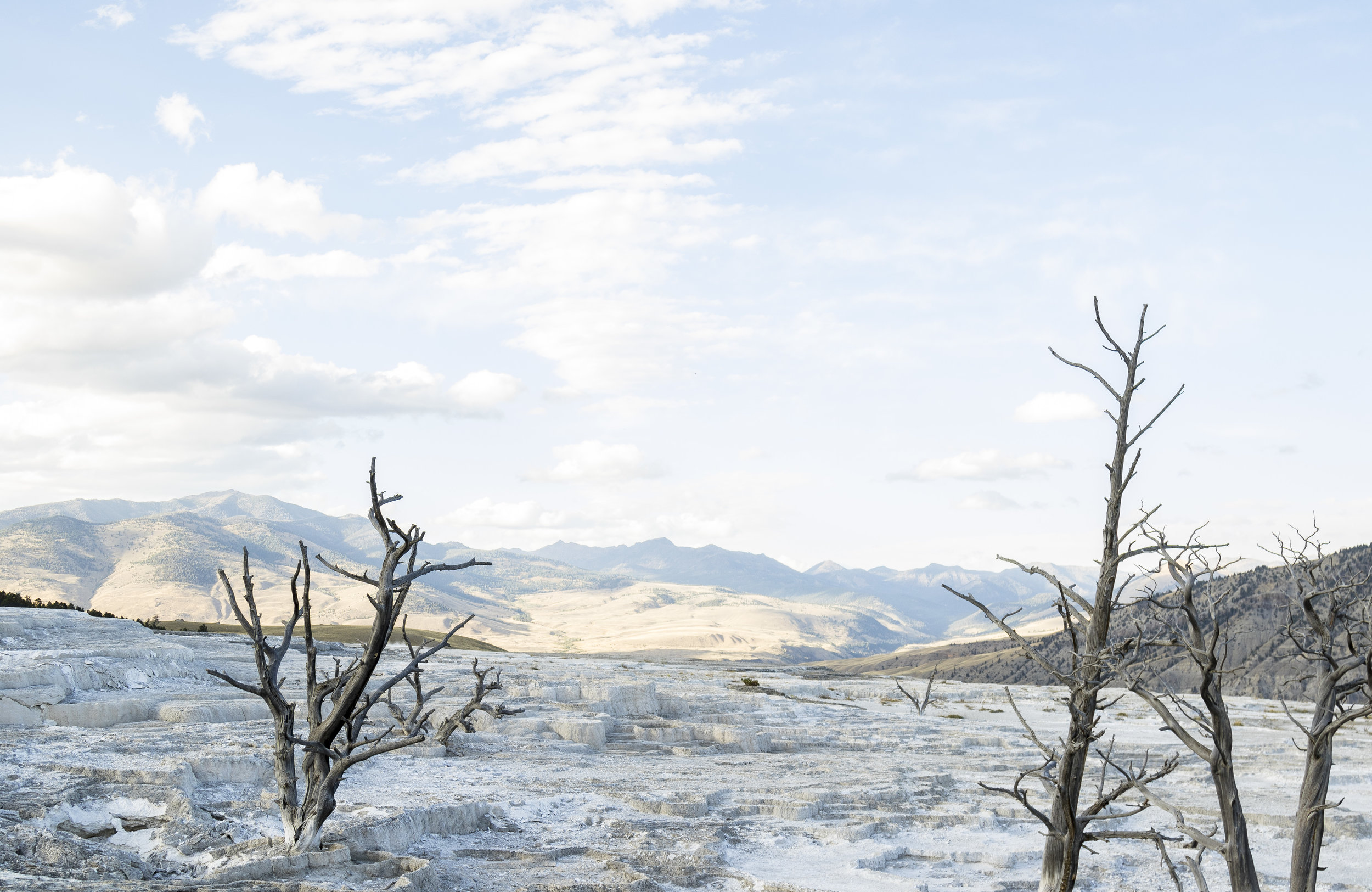 Mountain Landscape in Montana