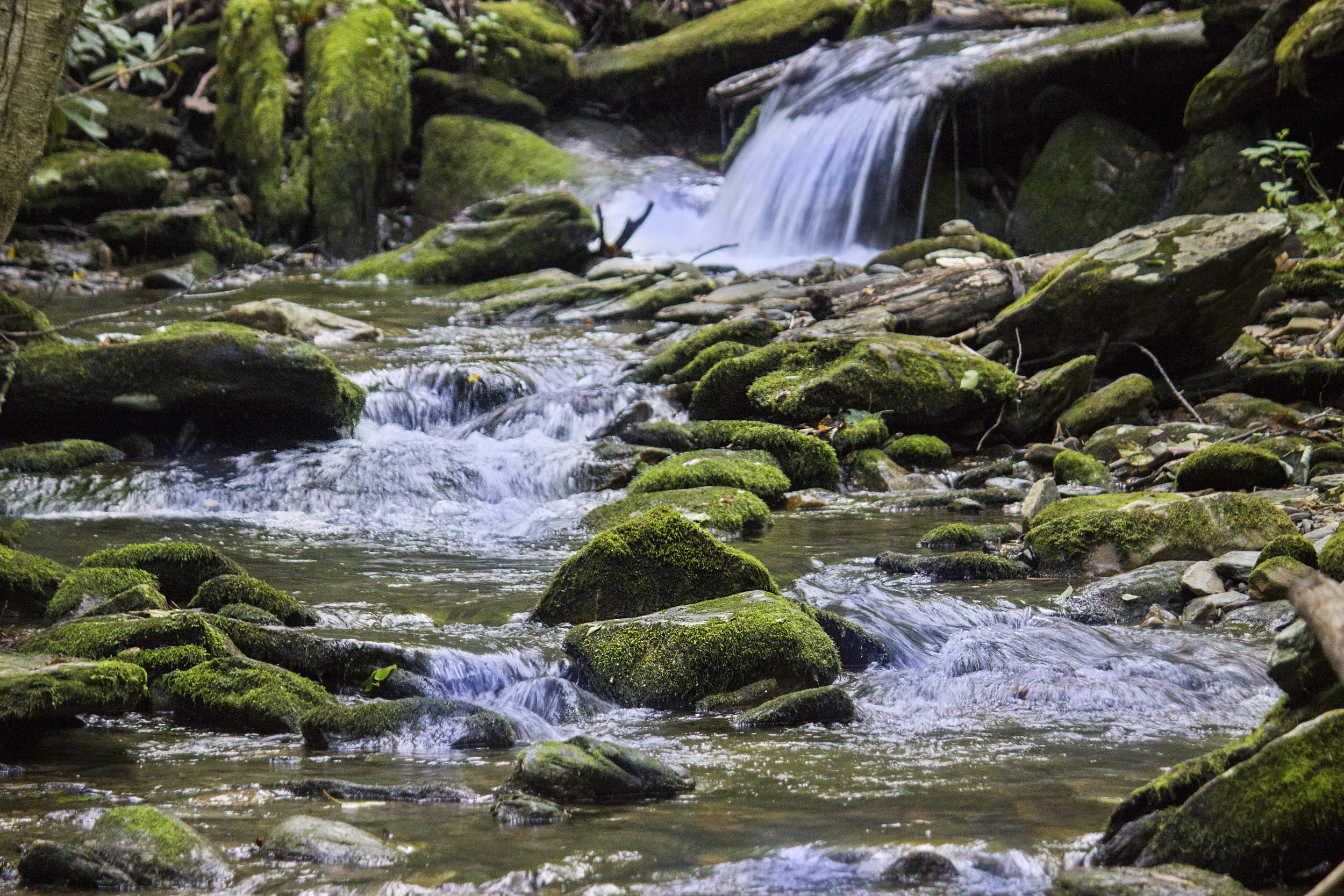Flowing River Still Picture